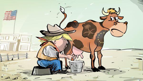 Trumpova dojná kráva - Sputnik Česká republika