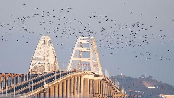 Ptáci nad Krymským mostem - Sputnik Česká republika