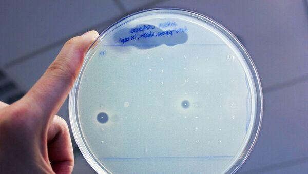 Antibiotika v lidském těle - Sputnik Česká republika