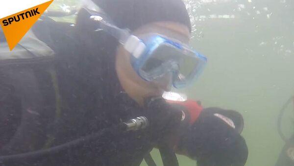 Nemáme jinou planetu. Jak 12letý potápěč zachraňuje naši ekologii - Sputnik Česká republika