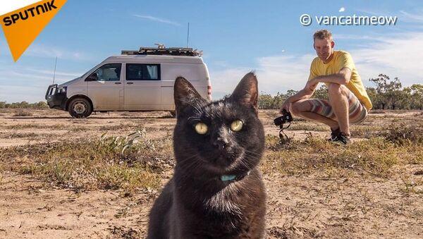 Rich a jeho kočka Will - Sputnik Česká republika