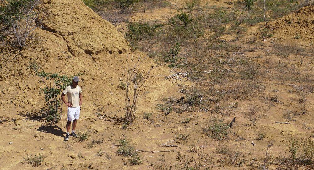 Hnízda termitů v Brazílii, které je možné je vidět z vesmíru