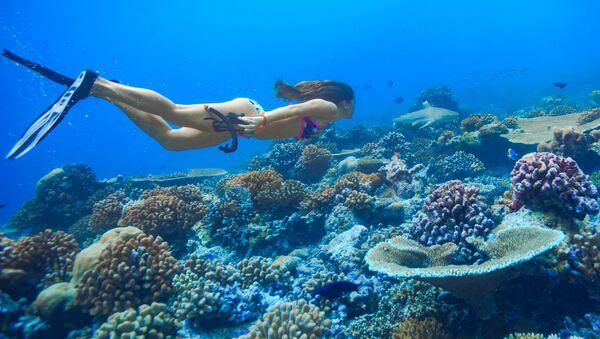 Dívka při potápění v oceánu. Ilustrační foto - Sputnik Česká republika