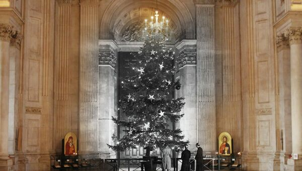 vánoční stromek - Sputnik Česká republika