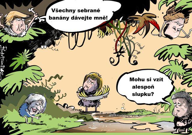 Politická aréna džungle