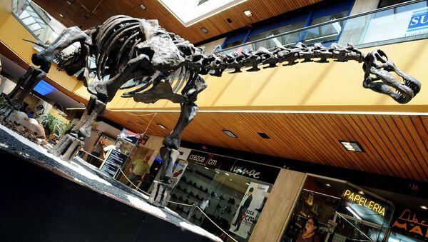 Kostra Titanosaura - Sputnik Česká republika