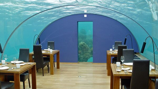 Restaurace Ithaa Underseas. Ostrov Rangali, Maledivy - Sputnik Česká republika