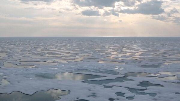Led na Antarktidě taje katastrofální rychlostí. Co se stane, jestli to bude pokračovat? - Sputnik Česká republika