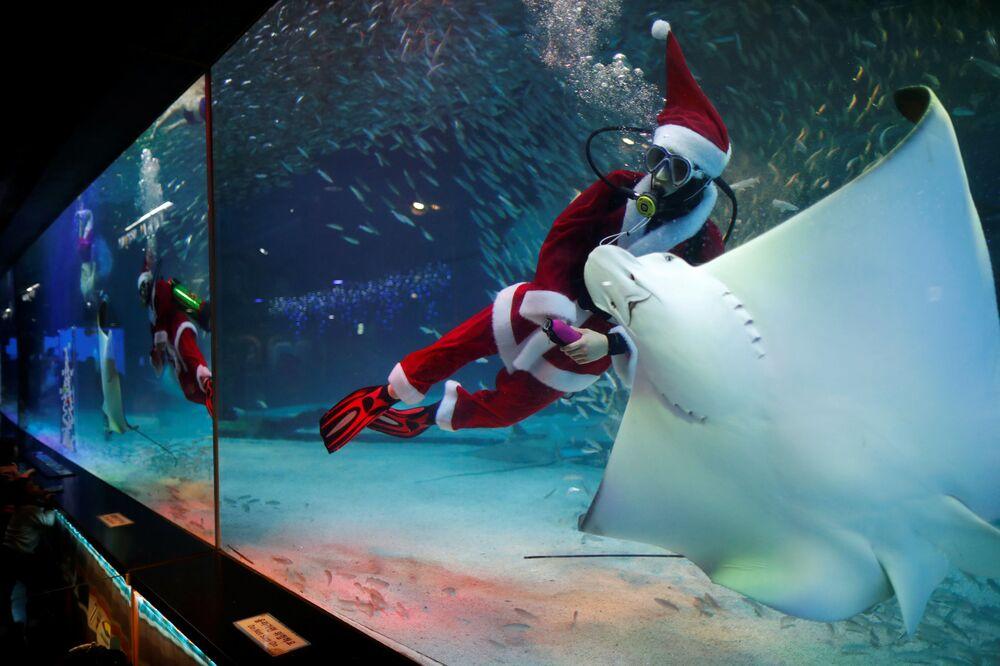 Potápěč v kostýmu Santa Klause během představení. Soul, Jižní Korea