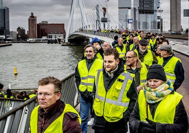 Žluté vesty v Rotterdamu