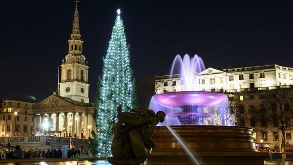 Vánoční strom na Trafalgarském náměstí v Londýně - Sputnik Česká republika