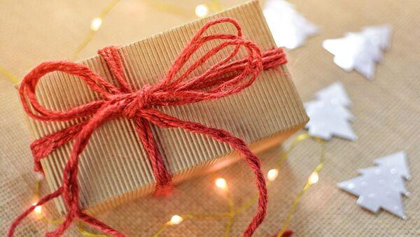 Vánoční dárek - Sputnik Česká republika