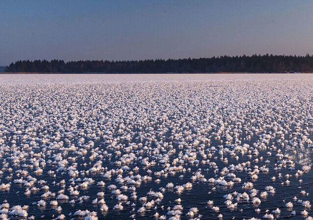 Krystalické květiny na Valdajském jezeru