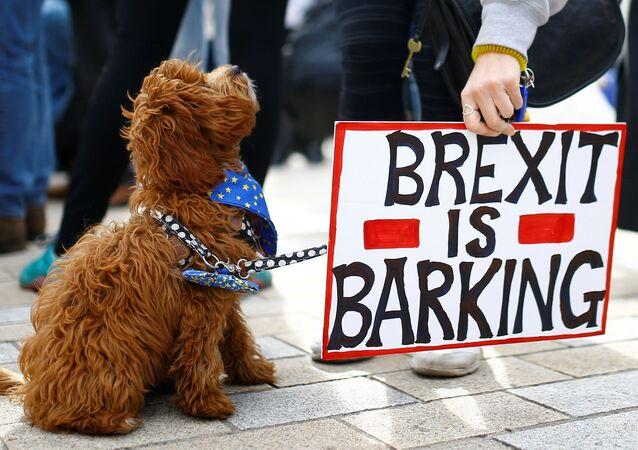 Protest proti brexitu v Londýně