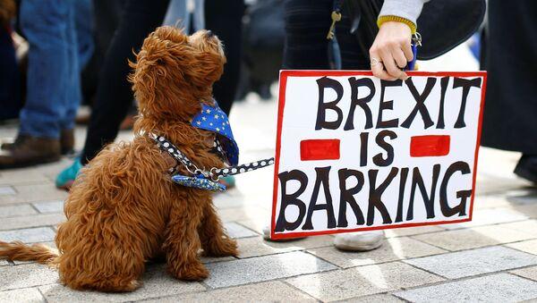 Protest proti brexitu v Londýně - Sputnik Česká republika