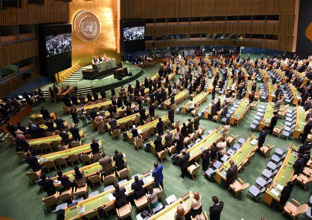 Zasedání Valného shromáždění OSN