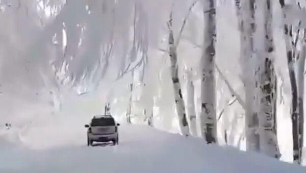 Pohádková zima v Gruzii: Tolik sněhu byste tam nečekali! (VIDEO) - Sputnik Česká republika