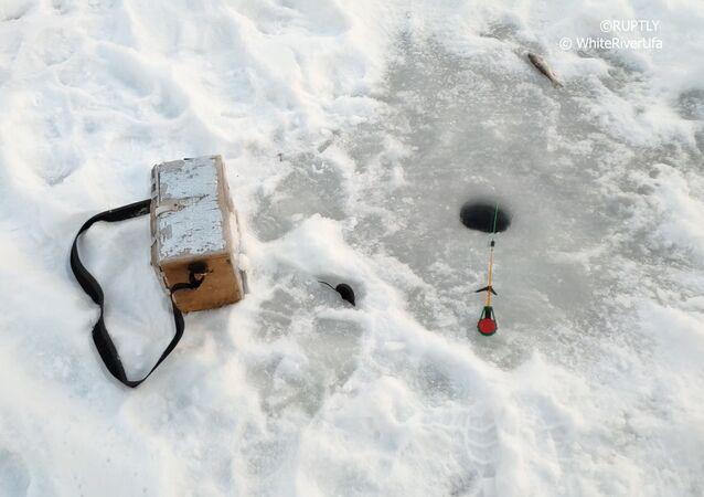 Legrace na rybách: malé vytrvalé zvířátko dosáhlo svého!