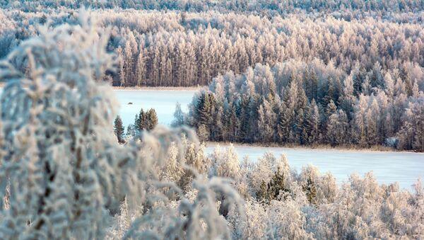 Zimní kouzlo ruských krajin - Sputnik Česká republika