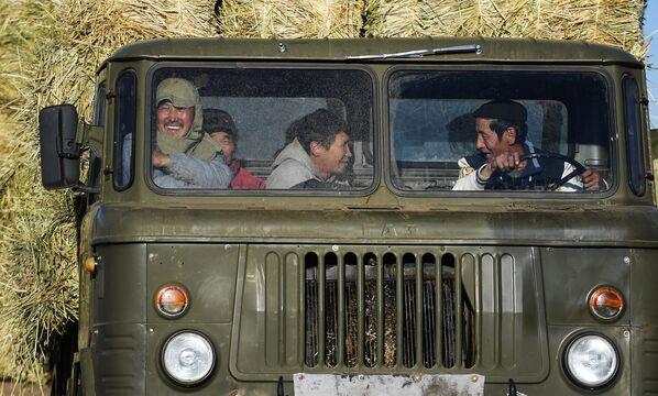 Pracovníci v kabině kamionu při sběru sena v mongolské stepi - Sputnik Česká republika