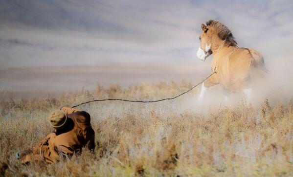 Mongolský pastýř s koněm - Sputnik Česká republika