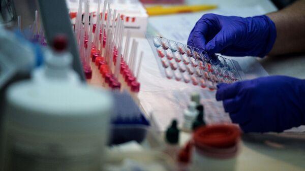 Лаборатория в Центре крови Федерального медико-биологического агентства (ФМБА) в Москве - Sputnik Česká republika