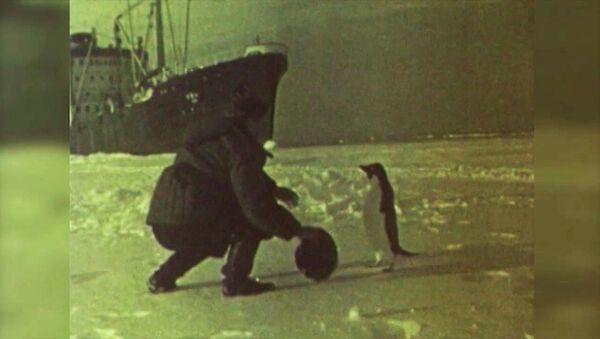 Výročí sovětské expedice v Antarktidě - Sputnik Česká republika