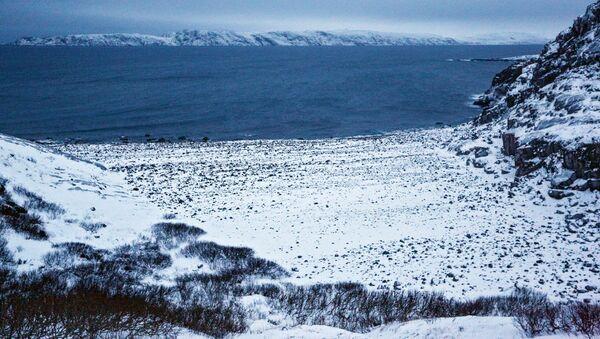 Pobřeží Barentsova moře na poloostrově Kola - Sputnik Česká republika
