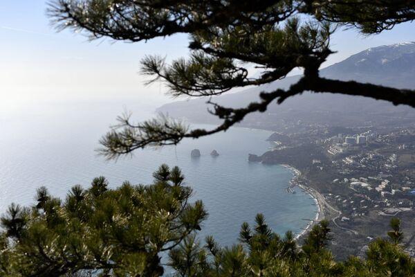 Výhled na Gurzuf na pobřeží Černého moře na Krymu - Sputnik Česká republika