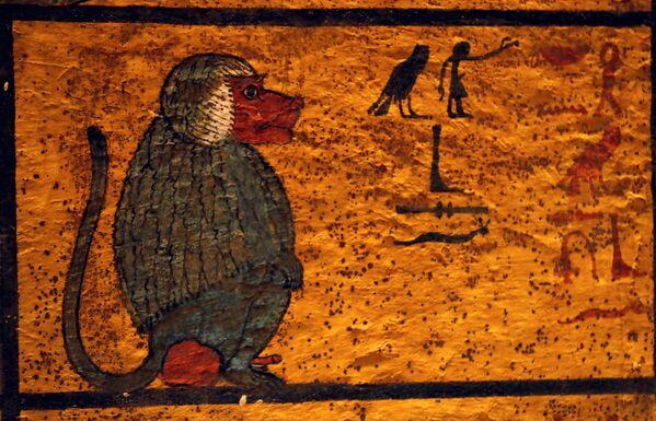 Rekonstrukce prokleté hrobky faraóna Tutanchamona - Sputnik Česká republika