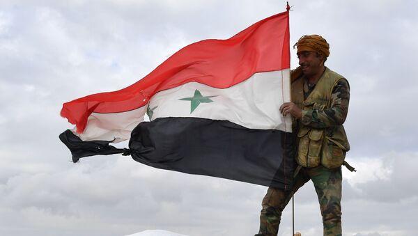 Voják syrské armády - Sputnik Česká republika