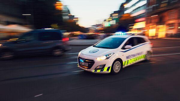 Policejní vůz. Ilustrační foto - Sputnik Česká republika