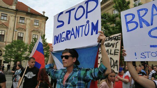 Protestní akce proti migrantům v Brně - Sputnik Česká republika
