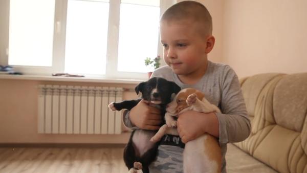 Chlapec ve svých šesti letech zachránil přes stovku zvířat - Sputnik Česká republika