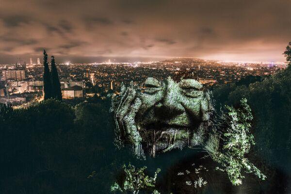Tváře stromů - Sputnik Česká republika