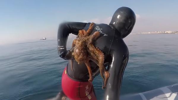 Neopouštěj mě! Chobotnice se neskutečně silně přitiskla k potápěči - Sputnik Česká republika
