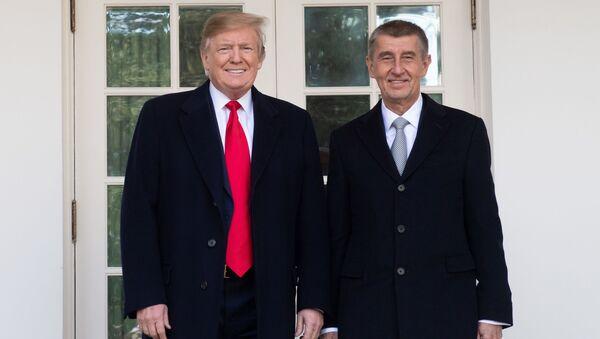 Premiér ČR Andrej Babiš a americký prezident Donald Trump ve Washingtonu (dne 7. března 2019). - Sputnik Česká republika