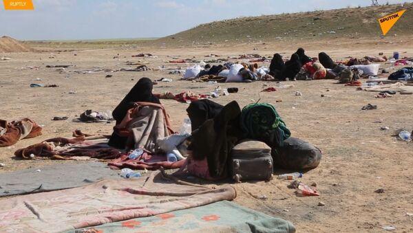 V Sýrii bylo množství vysídlených rodin evakuováno z poslední enklávy IS  - Sputnik Česká republika