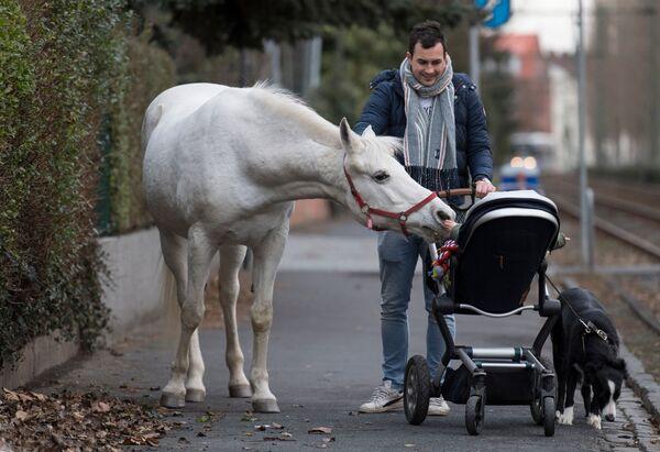 Kůň jménem Jenny si se zájmem prohlíží dítě, Frankfurt nad Mohanem, Německo - Sputnik Česká republika