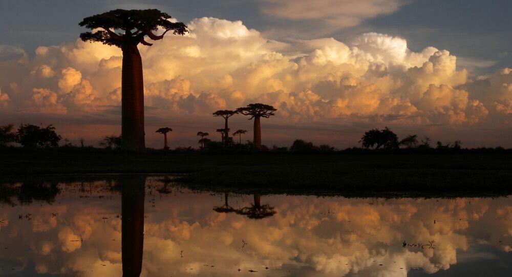 Madagaskar. Ilustrační foto.