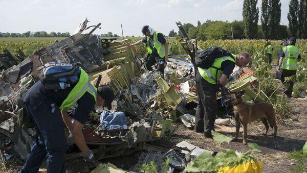 Místo havárie MH17 - Sputnik Česká republika