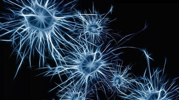 Neurony mozku. Ilustrační foto - Sputnik Česká republika