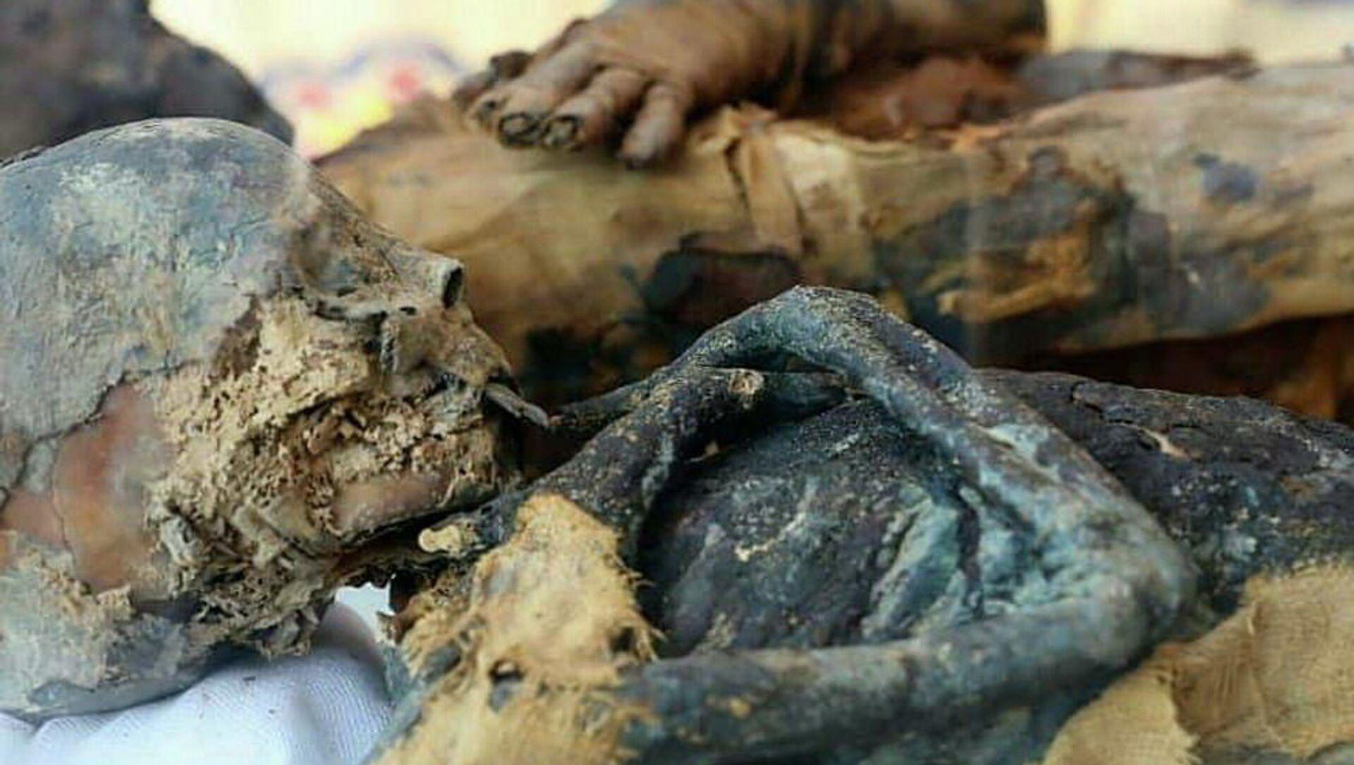 Mumie objevené v hrobce z dob Ptolemaiovců v egyptském guvernorátu Suhag - Sputnik Česká republika, 1920, 03.02.2021