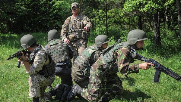 Ukrajinští vojáci a americký instruktor - Sputnik Česká republika