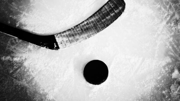 Symboly hokeje. Ilustrační foto - Sputnik Česká republika