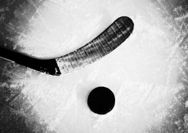Symboly hokeje. Ilustrační foto