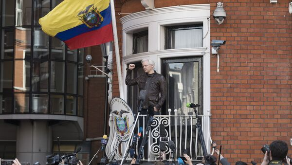 Ambasáda Ekvádoru ve Velké Británii. Julian Assange - Sputnik Česká republika