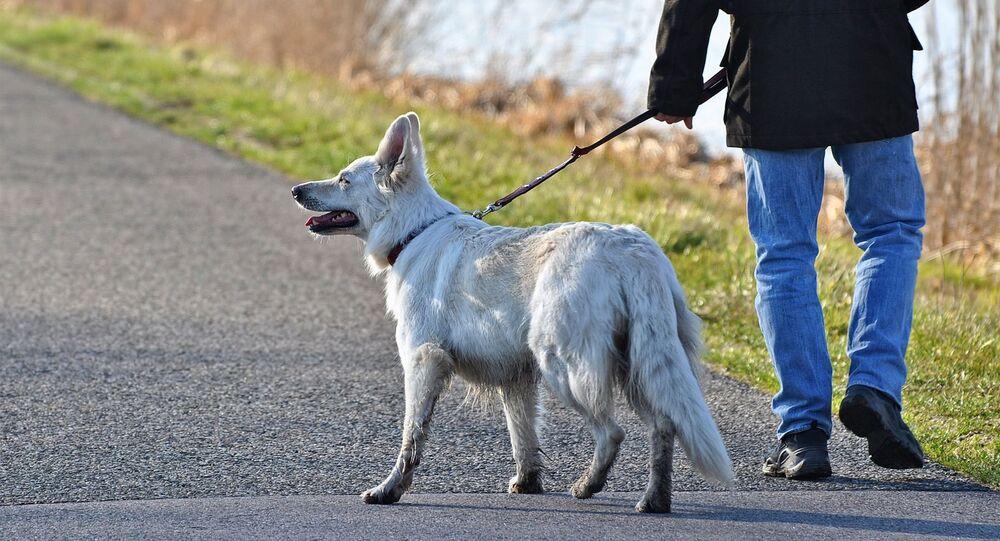 Pes se svým pánem