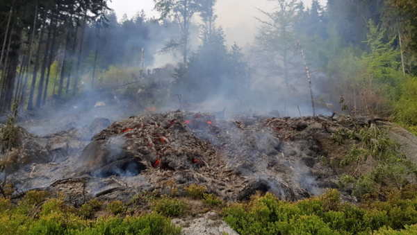 Lesní požár na Tanvaldském Špičáku - Sputnik Česká republika