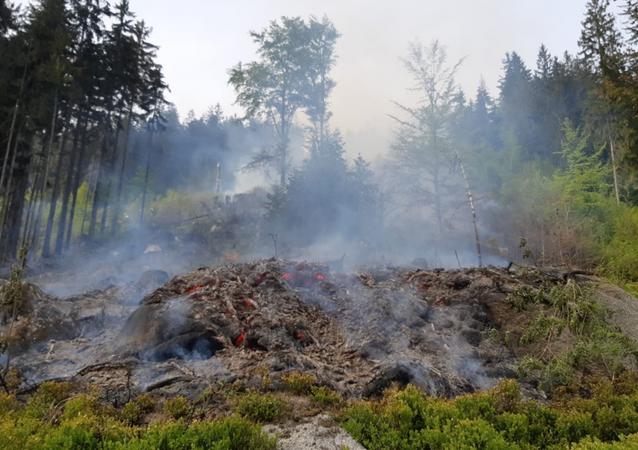 Lesní požár na Tanvaldském Špičáku